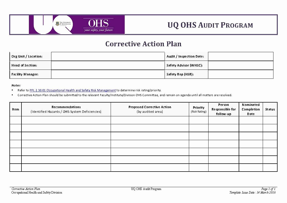 Corrective Action Plan Template Lovely Corrective Action Plan Template Pdf format