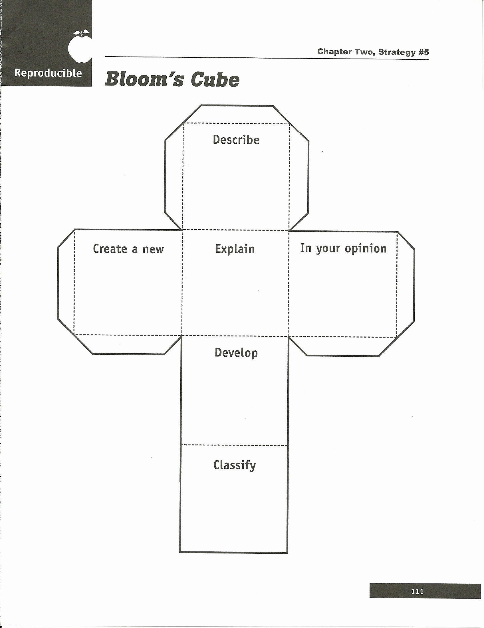 Cube Template Microsoft Word New Sd Esa Region 3 Documents