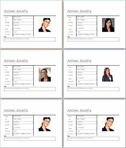 Customer Profile Template Word Awesome Employee Profile Template