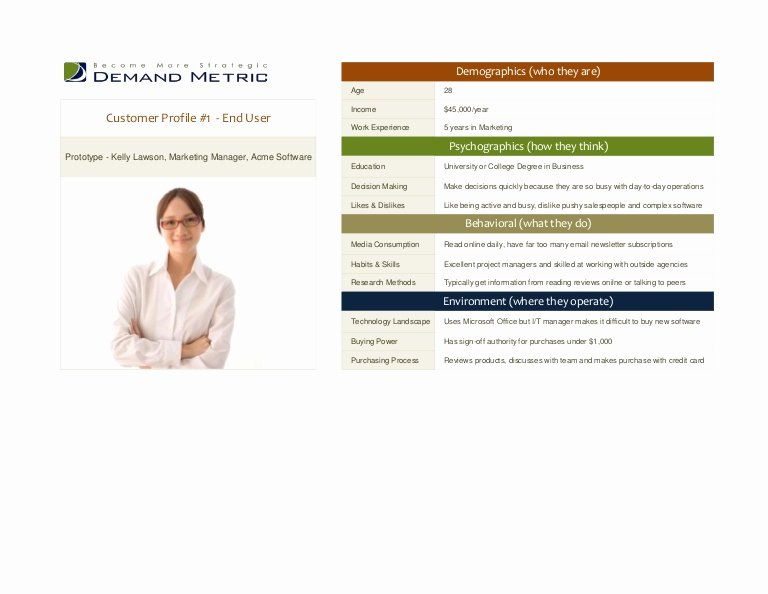 Customer Profile Template Word Beautiful Customer Profile Template
