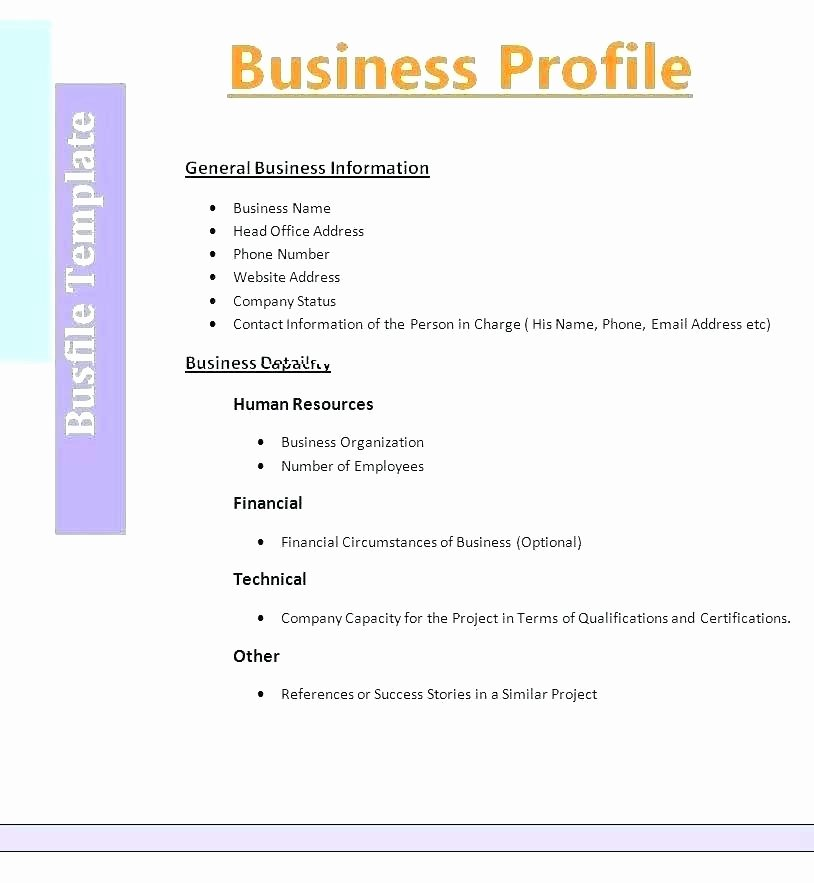 Customer Profile Template Word Inspirational Customer Profile Template Free