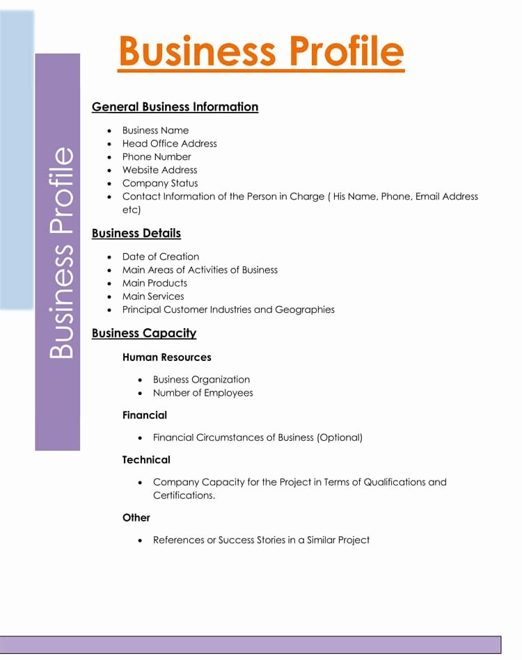 Customer Profile Template Word Lovely 20 Pany Business Profile Templates for Word