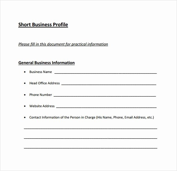 Customer Profile Template Word Lovely 6 Business Profile Samples Pdf