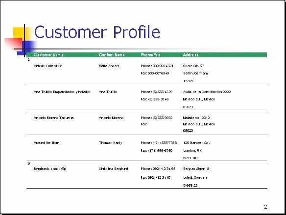 Customer Profile Template Word Luxury Customer Profile – is What A Business Creates to Develop A