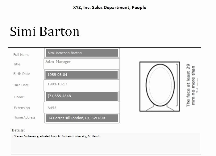 Customer Profile Template Word Luxury Employee Profile Template Word