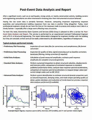 Data Analysis Report Template Lovely 6 Data Analysis Report Templates Google Docs Word