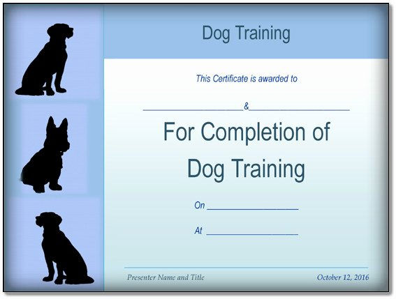 Dog Training Contract Template Awesome Basic Dog Training Certificate Template Ppt Pdf formats