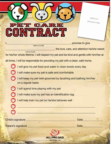 Dog Training Contract Template Fresh Pin by Imom On All Pro Dad