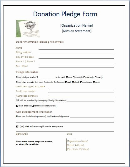 Donation form Template Pdf Lovely Sample Donation Pledge form