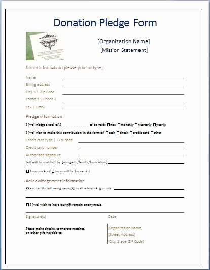 Donation form Template Word Lovely Sample Donation Pledge form