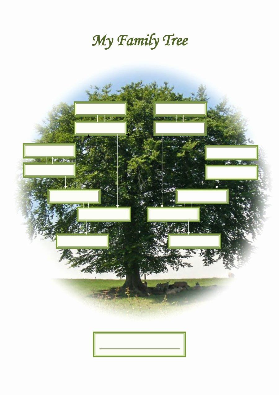 Editable Family Tree Template Fresh Free Editable Family Tree Template Daily Roabox