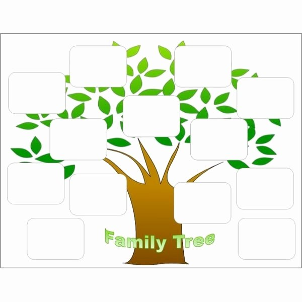 Editable Family Tree Templates Beautiful Free Editable Family Tree Template