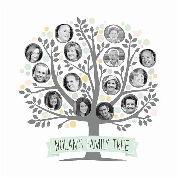 Editable Family Tree Templates Fresh 11 Popular Editable Family Tree Templates & Designs