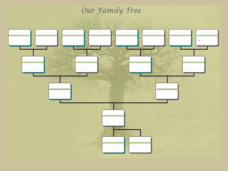 Editable Family Tree Templates Inspirational Family Tree Project Template – Ancestry Talks with Paul Crooks