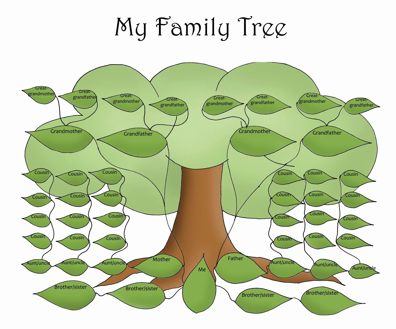 Editable Family Tree Templates Luxury Free Editable Family Tree Template Daily Roabox