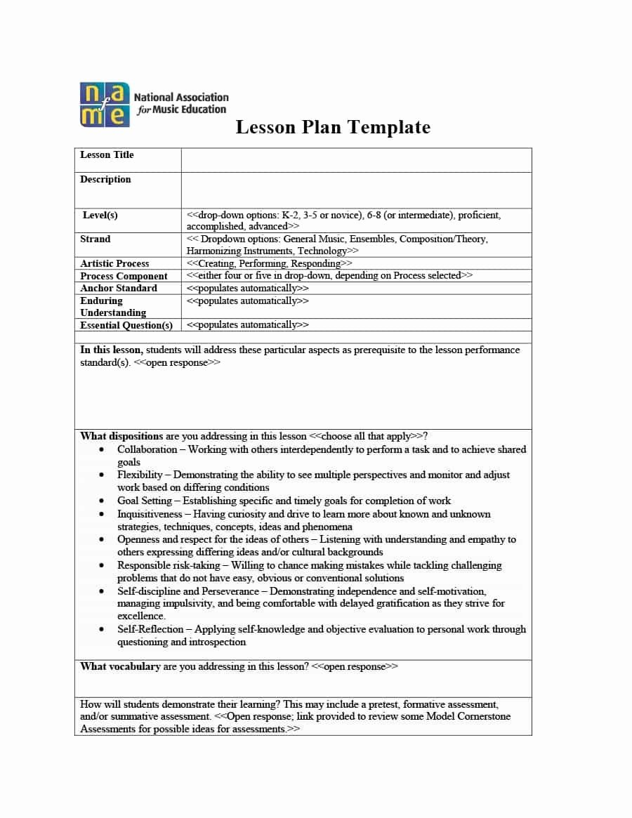 Elementary Music Lesson Plan Template New 009 Plan Template Music Lesson Tinypetition
