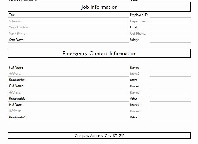 Employee Information forms Templates Fresh Record Of Employee Information form format Word and Excel