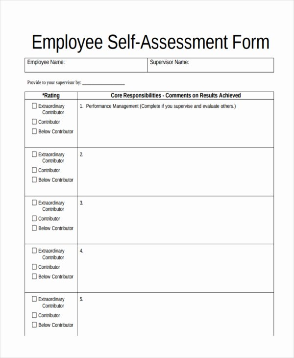 Employee Self Evaluation Template Lovely assessment form