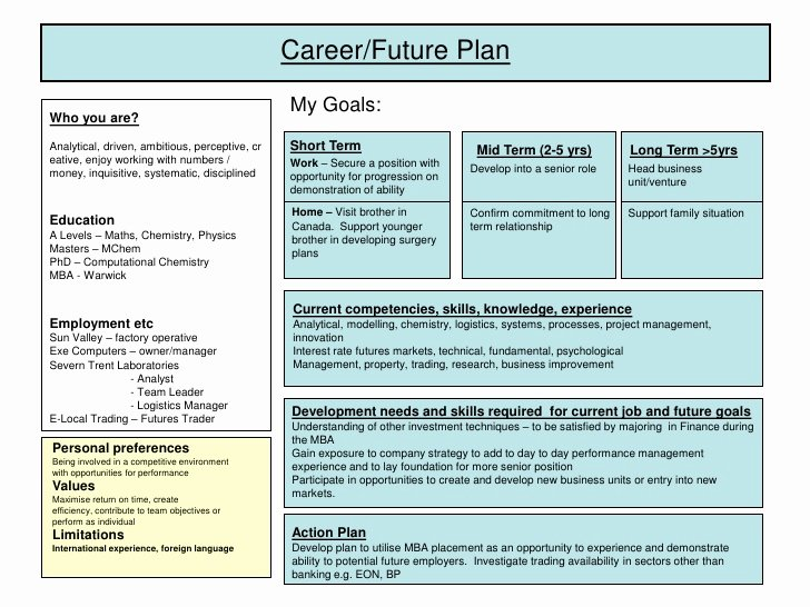 Employment Action Plan Template Luxury Career Plan Example