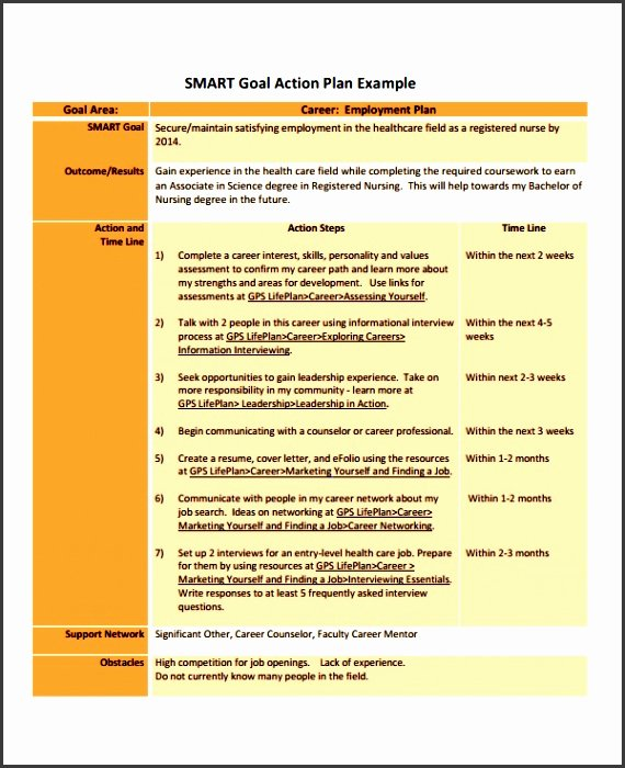 Employment Action Plan Template Unique 6 Professional Action Plan Template Sampletemplatess