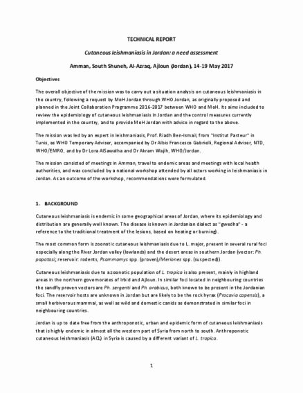 Engineering Technical Report Template Best Of Technical Report Writing Sample form Template Example Doc