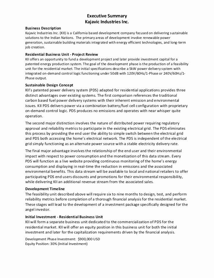Executive Summary Template Pdf Inspirational Executive Summary Example Kajavic Industries