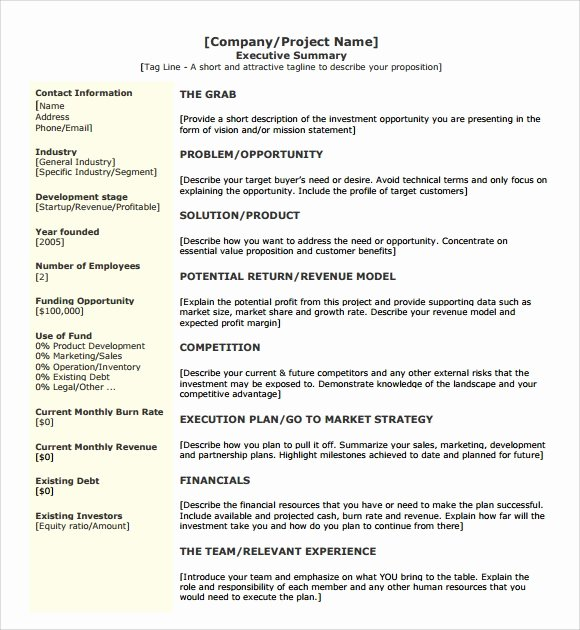 Executive Summary Template Pdf Inspirational Sample Executive Summary Template 8 Documents In Pdf