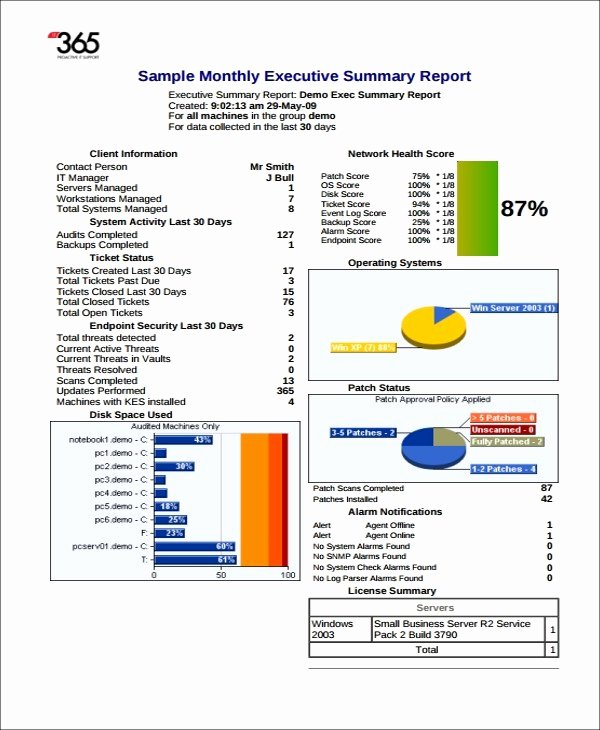 Executive Summary Template Pdf Luxury Executive Report Template Word – Executive Summary