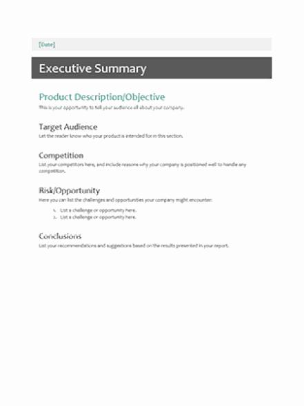 Executive Summary Template Pdf New 43 Free Executive Summary Templates In Word Excel Pdf
