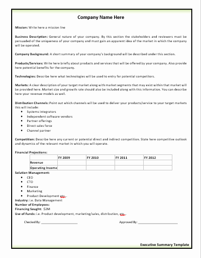 Executive Summary Word Template Elegant 10 Executive Summary Templates