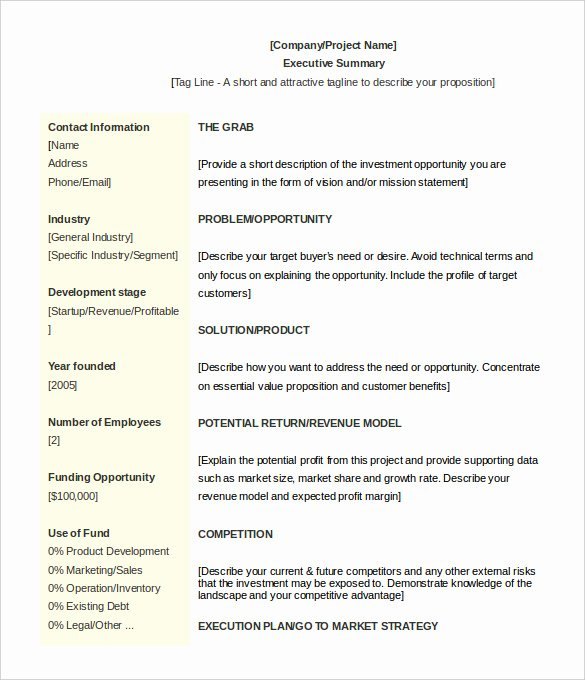 Executive Summary Word Template Elegant 31 Executive Summary Templates Free Sample Example
