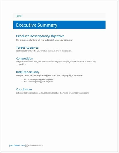 Executive Summary Word Template Elegant Executive Summary Template for Ms Word
