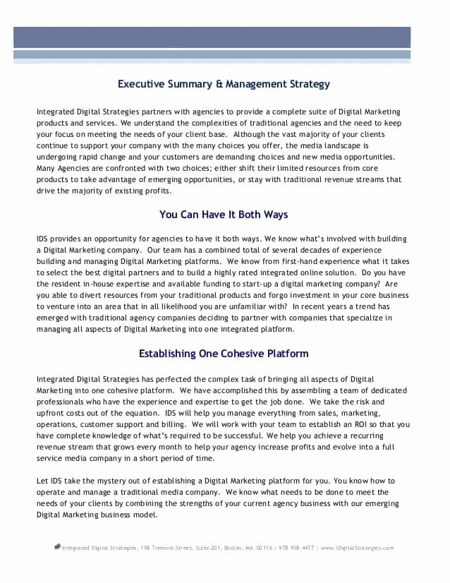Executive Summary Word Template Fresh top 5 Free Executive Summary Templates Word Templates