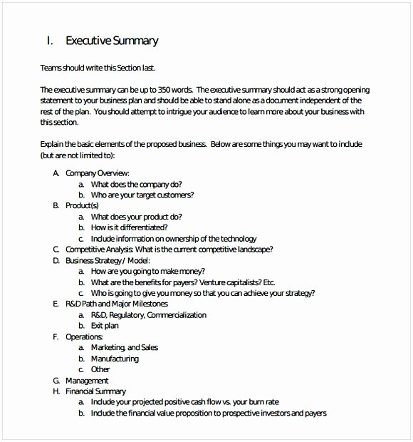 Executive Summary Word Template Inspirational Executive Summary Template Word