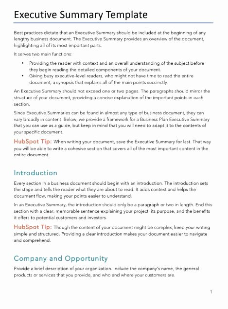 Executive Summary Word Template Lovely Free Business Plans Pdf & Word Template