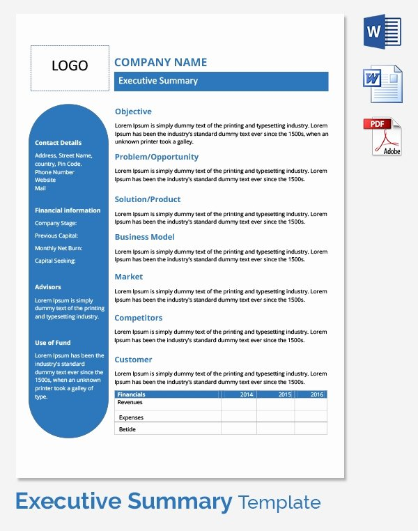 Executive Summary Word Template Lovely Free Executive Summary Template Download In Word Pdf