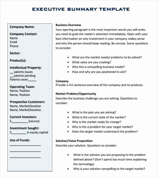 Executive Summary Word Template New 43 Free Executive Summary Templates In Word Excel Pdf