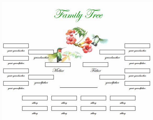 Family Tree Template Free Editable Fresh Blank Family Tree Template – 31 Free Word Pdf Documents
