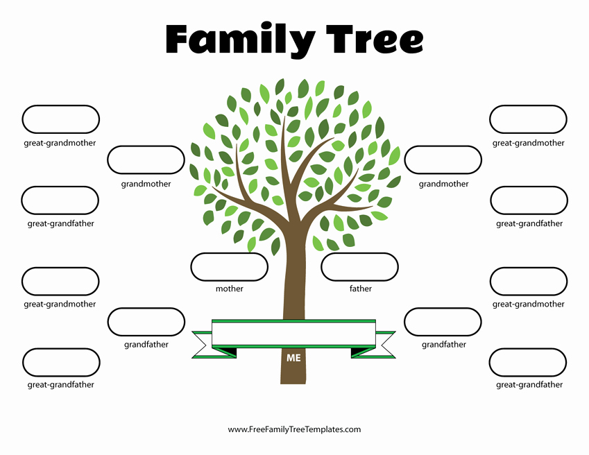 Family Tree Template Free Editable New 4 Generation Family Tree Template – Free Family Tree Templates