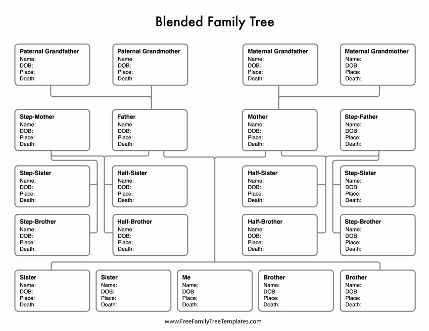 Family Tree Template with Siblings Beautiful Blended Family Tree Template – Free Family Tree Templates