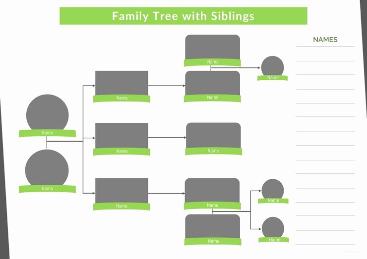 Family Tree Template with Siblings Best Of 37 Family Tree Templates Pdf Doc Excel Psd