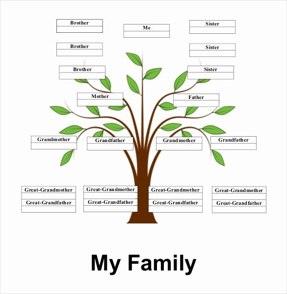 Family Tree Template with Siblings Best Of Simple Family Tree Template 27 Free Word Excel Pdf
