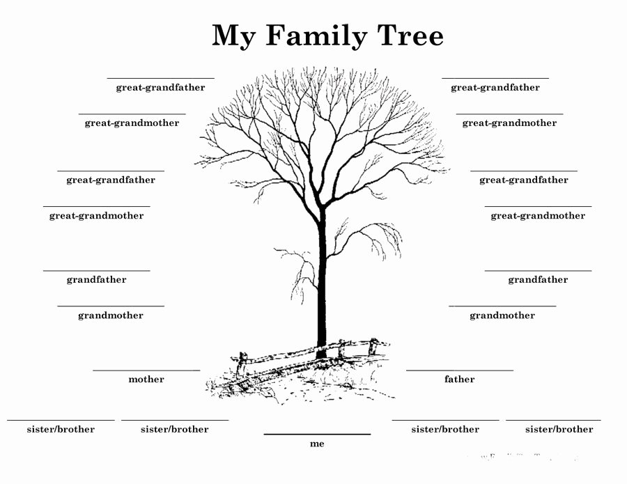 Family Tree Template with Siblings Inspirational Printable Family Tree with Siblings Printable Pages