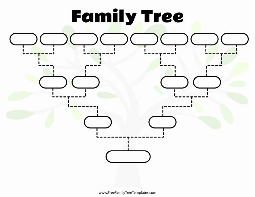Family Tree Template with Siblings Lovely Free Family Tree Templates for A Projects