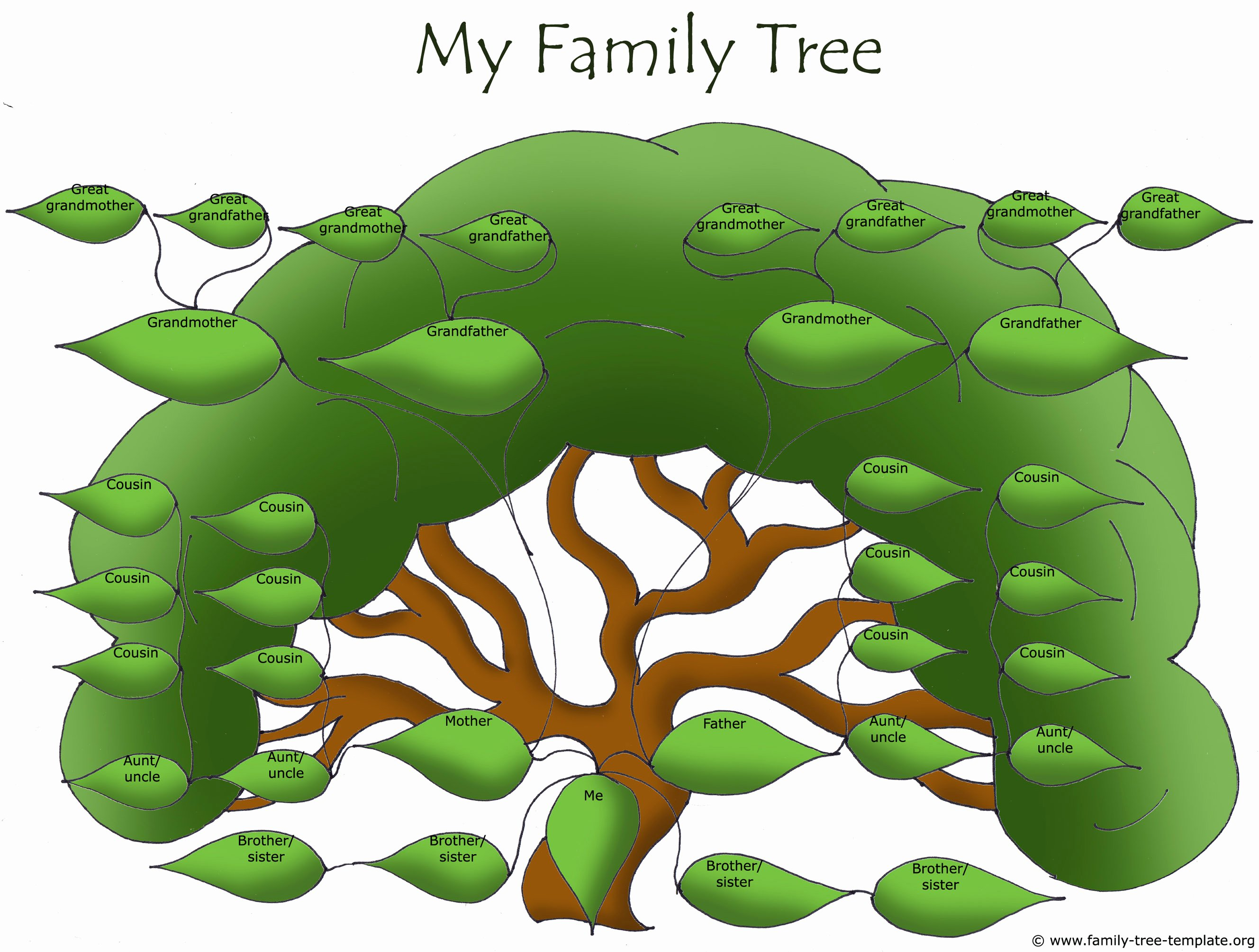 Family Tree Template with Siblings Unique Free Family Tree Templates Using Free Ancestry Information