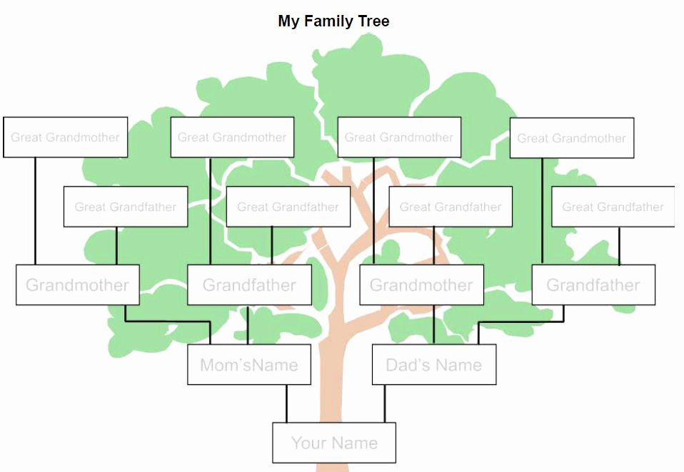 Family Tree Template Word Fresh is Your Life A Story