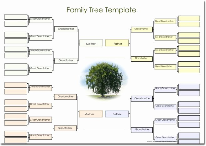 Family Tree Template Word Inspirational 21 Genogram Templates Easily Create Family Charts