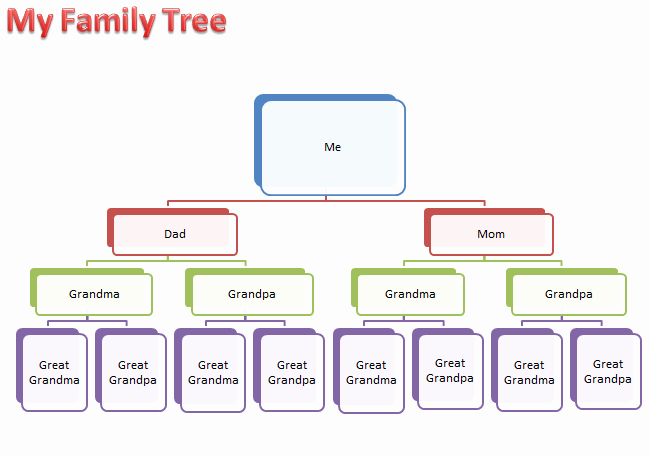 Family Tree Template Word Inspirational Make A Family Tree
