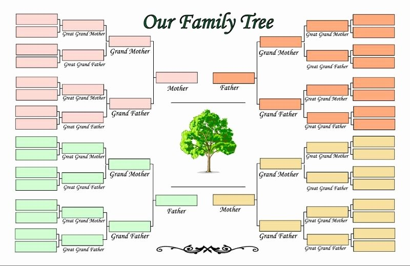 Family Tree with Pictures Template Fresh 5 Generation Family Tree Template Family Tree Template