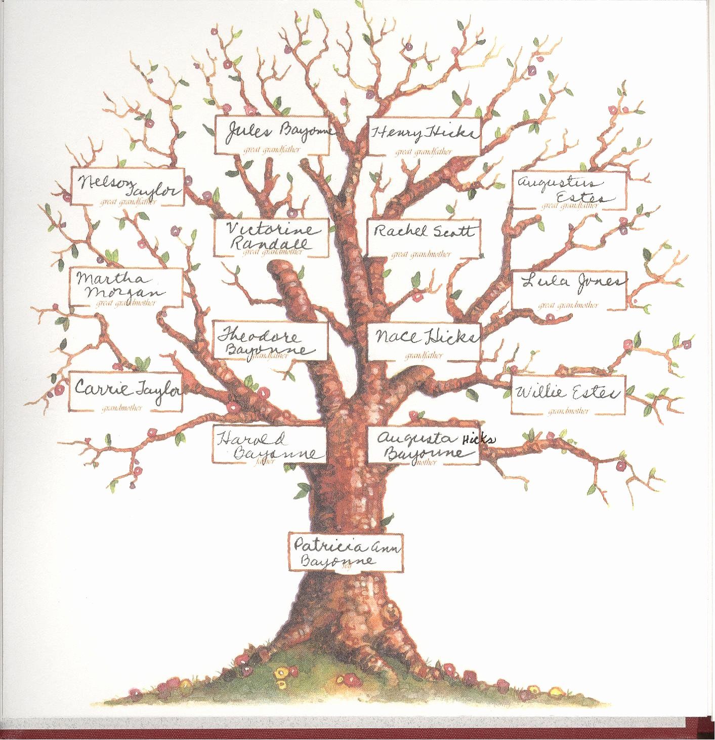 Family Tree with Pictures Template Lovely Family Trees On Pinterest